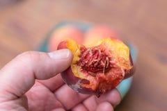 供以人员拿着与叮咬的一个水多的桃子被采取在它外面 免版税库存照片