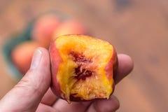 供以人员拿着与叮咬的一个水多的桃子被采取在它外面 库存图片