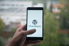 供以人员拿着有Wordpress的智能手机与在屏幕上的手指 免版税库存图片