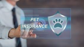 供以人员接触在触摸屏上的一个宠物保险概念 免版税库存照片