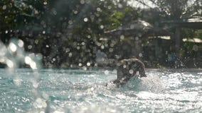 供以人员晒日光浴,游泳和放松在游泳池在慢动作的晴天 水在一美丽晴朗飞溅 影视素材