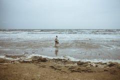供以人员沿海滨的赛跑在多暴风雨的天气 库存照片