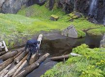供以人员站立在木日志的远足者takeing净水,填装 库存图片