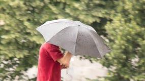供以人员走在伞在一个多雨春日,批评下模糊 免版税图库摄影