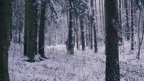 供以人员运行在冬天森林启发和刺激概念的足迹赛跑者户外 影视素材