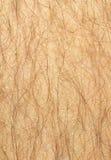 供以人员长毛的行程 免版税库存图片