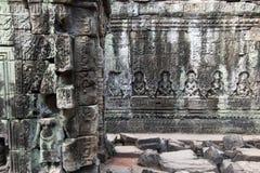 供以座位的图雕刻在12世纪Preah可汗寺庙的树下 免版税库存照片