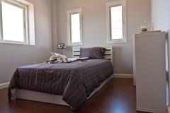 供卧室棕色页白色住宿 免版税图库摄影