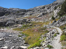 供徒步旅行的小道在国王峡谷国家公园 免版税库存照片