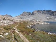 供徒步旅行的小道在国王峡谷国家公园 库存图片
