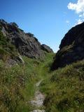 供徒步旅行的小道在爱尔兰 库存照片