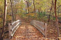 供徒步旅行的小道在秋天森林里 库存图片
