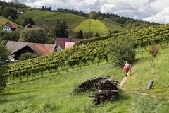 供徒步旅行的小道在萨斯巴瓦尔登 图库摄影