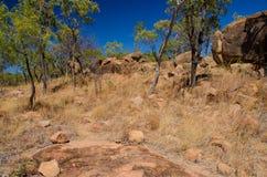 供徒步旅行的小道在Undara火山的国家公园,澳大利亚 免版税库存图片