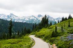供徒步旅行的小道通过山 库存照片