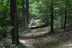 供徒步旅行的小道 图库摄影
