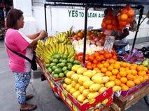 供营商在安蒂波洛市卖在果子推车的各种各样的新鲜水果沿一条街道,菲律宾 免版税图库摄影
