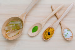 供选择护肤和自创洗刷芦荟维拉和海盐 库存照片