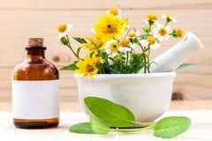 供选择的医疗保健新鲜草本,油和野花与m 图库摄影