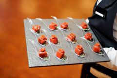 供食在红色釉的侍者咸小开胃菜装饰用各式各样的蕃茄和microgreens 库存图片