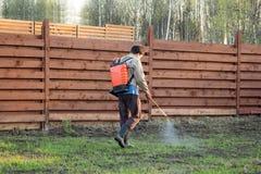 供以人员与背包式喷雾器的除草药的浪花草 免版税库存图片
