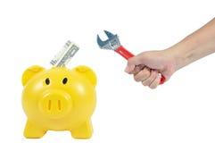 供以人员与黄色贪心银行的手行动,企业概念 免版税库存图片
