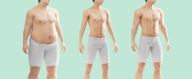 供以人员体脂肪并且变薄,节食,健身房 图库摄影