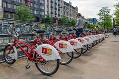 供以人员停车处自行车在自行车租务在安特卫普,比利时 库存图片