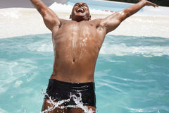 供以人员向后潜水入游泳池 免版税库存图片