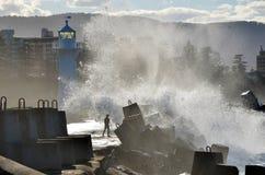 供以人员和他的在一个码头的狗有打破在他们的狂放的波浪的 库存照片