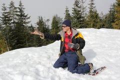 供以人员喂养在他的手上的灰色杰伊在登上西摩 免版税库存图片