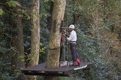 供以人员在清洗一棵高大的树木的工作 库存照片