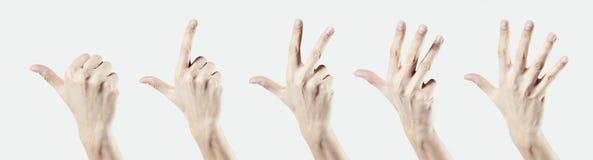 供以人员在白色背景隔绝的手,由手指的一两三四五计数 免版税库存图片