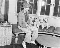 供以人员坐与他的三条狗的一条长凳(所有人被描述不更长生存,并且庄园不存在 供应商保单 免版税库存照片