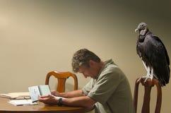 供以人员执行与一只饥饿的雕的预算值在他之后 免版税库存照片