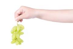 供以人员拿着一束绿色葡萄的手,隔绝在白色背景 免版税库存照片