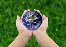 供以人员拿着地球用在草背景的手 库存图片
