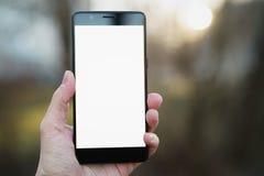 供以人员拿着有白色屏幕的手智能手机户外有春天被弄脏的背景 库存照片