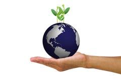 供以人员拿着从地球的` s手生长年轻绿色新芽在白色背景 免版税库存图片