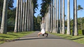 供以人员显示印象深刻的力量,做在道路的手倒立在棕榈树中的一片雨林 股票视频