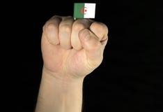 供以人员有在黑色隔绝的阿尔及利亚的旗子的手拳头 免版税库存图片