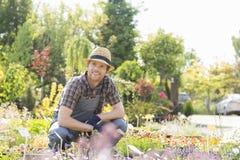 供以人员看去,当从事园艺植物托儿所时 库存照片