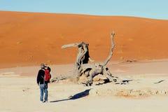 供以人员背包徒步旅行者死的Vlei沙漠沙丘,纳米比亚 库存照片