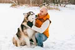 供以人员走与狗与雪的冬时在森林爱斯基摩狗和爱斯基摩友谊 库存图片