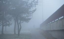 供以人员走在街道上每有雾的天 图库摄影