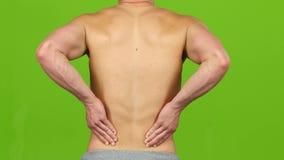 供以人员遭受腰疼痛苦的抽疯,严厉背部疼痛 特写镜头 影视素材