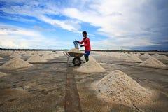供以人员铁锹盐入独轮车在农场 免版税库存照片