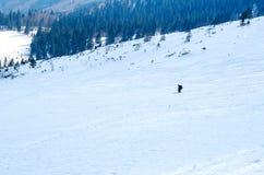 供以人员滑雪不劳而获下坡在阴影的冬天季节在美好的晴天 图库摄影