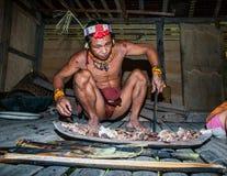 供以人员Mentawai部落食物为家庭做准备 库存图片