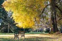 供以座位和享受秋天季节的一个平静的地方的看法 免版税图库摄影